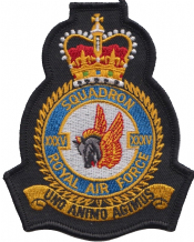 No. XXXV (35) Squadron Royal Air Force RAF Crest MOD Embroidered Patch